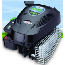 Двигатель Briggs&Stratton 550 Series EVE 10L8